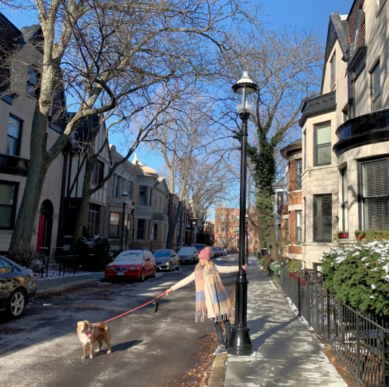 A Little Bit of London in Chicago | Alta Vista Terrace District